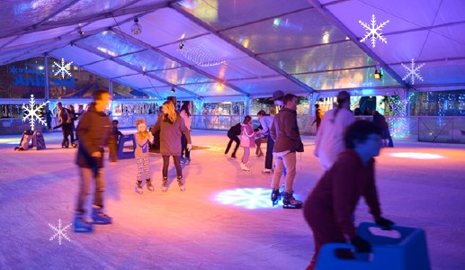 Synthetic Ice Skating Rink